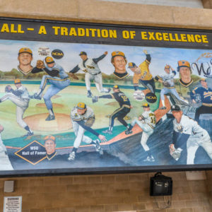 Shocker Baseball - Wichita State University, Eck Stadium - 1845 Fairmount - by Ted Watts - photo from 2009