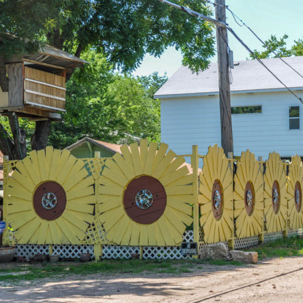 untitled - sunflower fence - 401 S. Poplar - photo from 2009