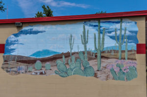 desert scene - Platt Liquor - 725 W. 29th Street North 2009