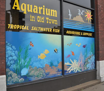 Aquarium in Old Town, 1001 E. Douglas - photo from 2009